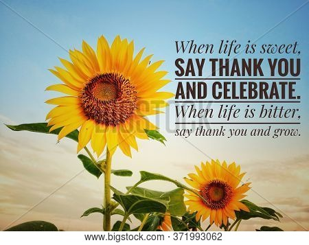 Inspirational Motivational Quote - When Life Is Sweet, Say Thank You And Celebrate. When Life Is Bit