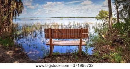 Bench Overlooks The Flooded Swamp Of Myakka River State Park In Sarasota, Florida.
