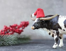 2021 Year Of The Ox Or Bull. New Year Postcard With Toy Bull In Red Hat And Branch Of Christmas Tree