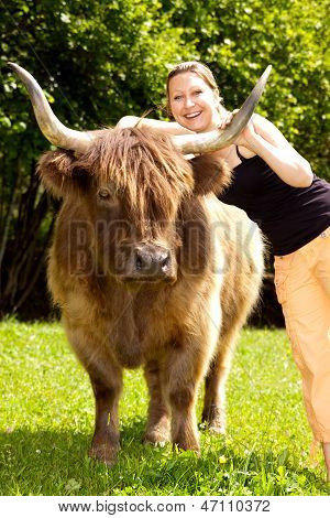 young beautiful woman hugs an highland cattle poster