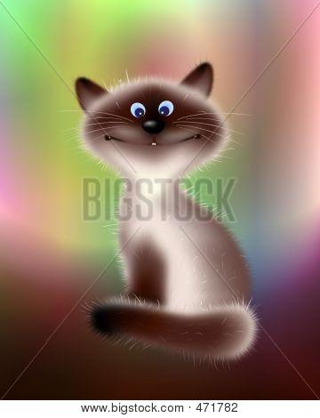 Sly Cat