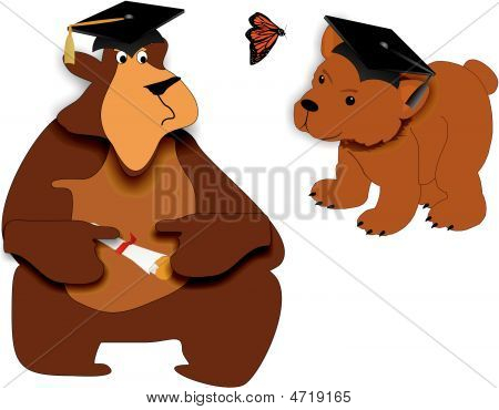 Bear Facts Of Graduating..illustration