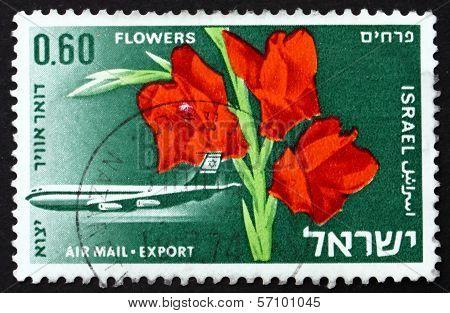 Postage Stamp Israel 1968 Boeing 707 And Gladiolus Flower
