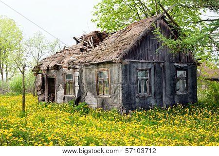 Wooden Ramshackle Cottage House