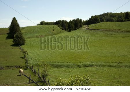 Green Hills With Blue Skiy