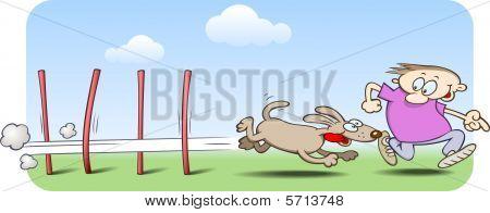 Agility dog running through weave poles