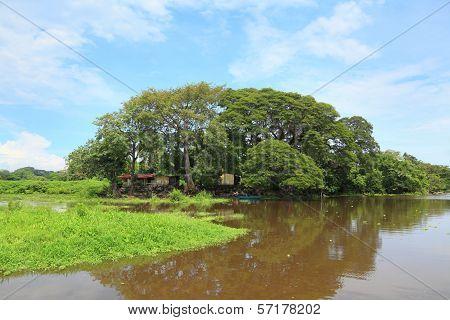 Tropical Village