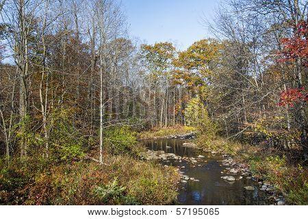 Scenic Brook