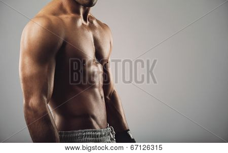 Young Man With Muscular Body