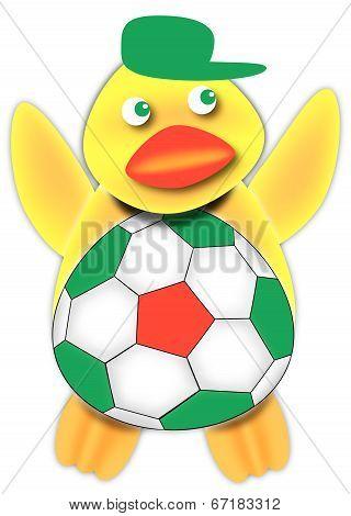 Italian Soccer Fan