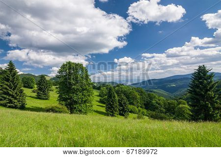 Amazing Summer Countryside With Blue Sky And Clouds