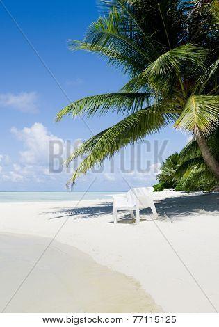 Beach chair under a palm tree on a hot afternoon, Kuramathi island
