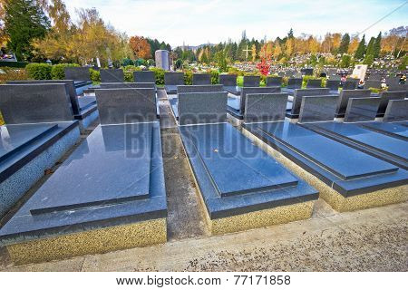 Unmarked And Unnamed Cemetary Graves
