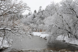 Credit River In The Cold Winter Morning