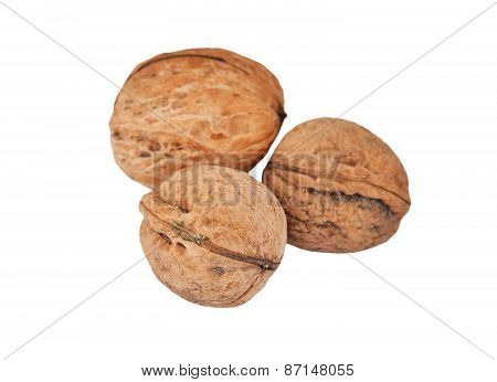 Walnut (Juglans regia) isolated on the white background poster