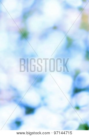 Nature Soft Abstract Background Blurred Magic Lights For Your Design. Blie White Color