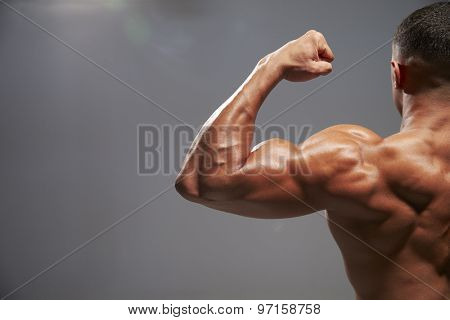 Male bodybuilder flexing bicep, back view with copy space poster