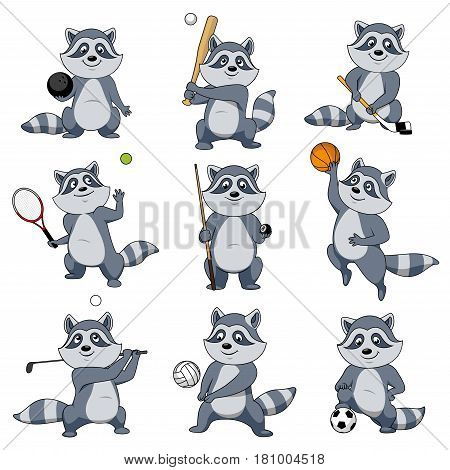 Cartoon raccoon vector mascot character. Animal playing sport games rugby ball and baseball bat, football soccer and basketball, tennis racket and billiards cue or golf club and hockey