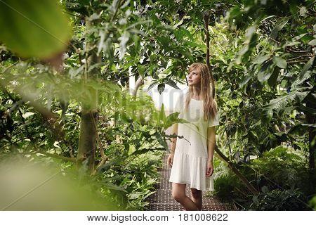 Beautiful woman in white dress amongst the plants