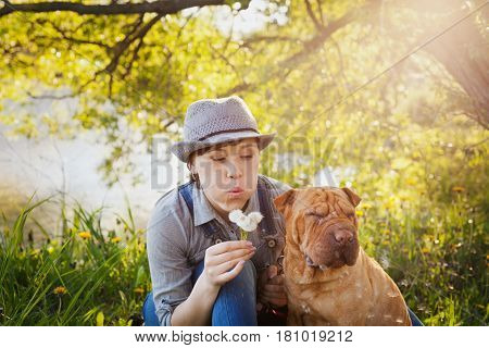 Young woman or girl with dog Shar Pei sitting in the field in sunset light and blowing on a dandelion flowers. True friends forever people and pets concept.