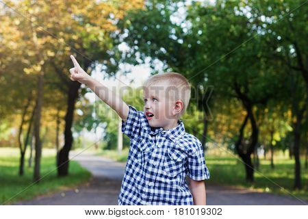 cute little boy showing a forefinger o the sun or the sky in beautiful autumn park.