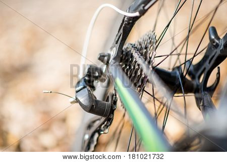 Close-up view of rear wheel of bicycle with chain and sprocket on blurred autumn leaves background