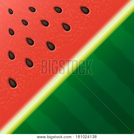 Watermelon texture background. Vector illustration Eps 10