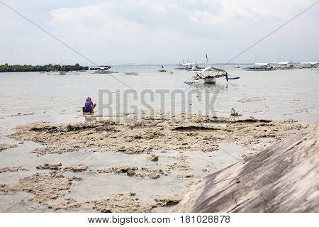 People gather plankton, crabs on the sea. Hard work in Cebu Philippines