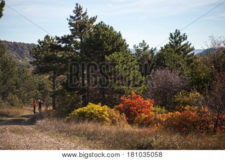 KOKOS MOUNTAIN, SLOVENIA - OCTOBER, 29: View of countryside road in the Cocusso mountain on October 29, 2016