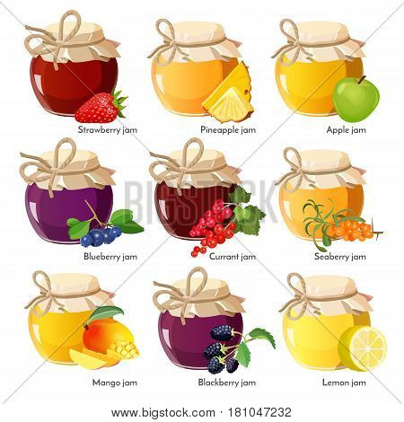 Jars with red currant and strawberry, healthy seaberry and pineapple, organic mango and apple, fresh blackberry and blueberry, blackberry lemon jam vector illustration on white. Homemade jelly set
