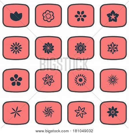 Vector Illustration Set Of Simple Blossom Icons. Elements Floral, Delphinium, Pattern And Other Synonyms Bloom, Delphinium And Floral.