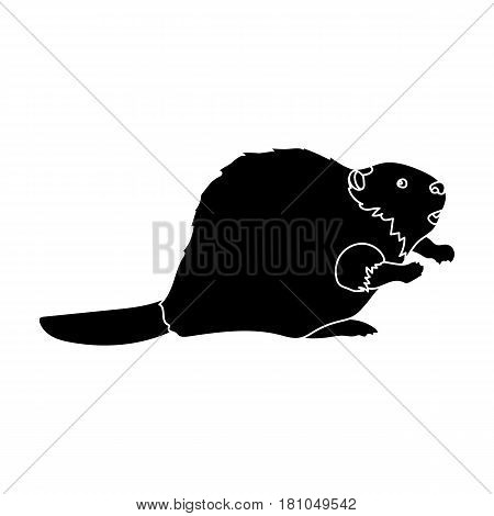 Canadian beaver. Canada single icon in black style vector symbol stock illustration .
