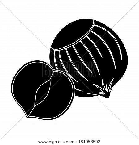Hazelnuts in shell.Different kinds of nuts single icon in black style vector symbol stock web illustration.