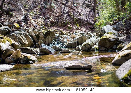 Rocky River and Stream in Forest seen during Hike