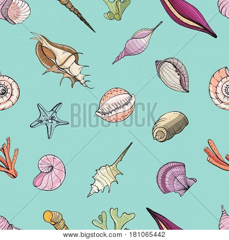 Hand drawn seamless pattern with seashells, Vector colorful background.