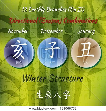 Chinese feng shui horoscope letters. Ba zi Combinations. Translation of 12 zodiac animals, feng shui signs hieroglyph- Rat, Ox, Tiger, Rabbit, Dragon, Snake, Horse, Goat, Monkey, Rooster, Dog, Pig.