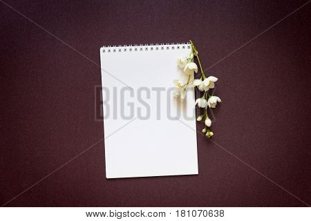 blank notebook with a branch of a flowering jasmine on a purple gradient background
