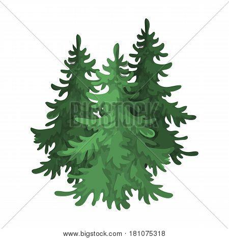 Canadian spruce. Canada single icon in cartoon style vector symbol stock illustration .