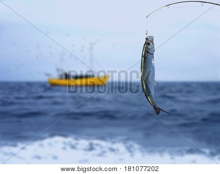 herring fish on fishing hook on sea background