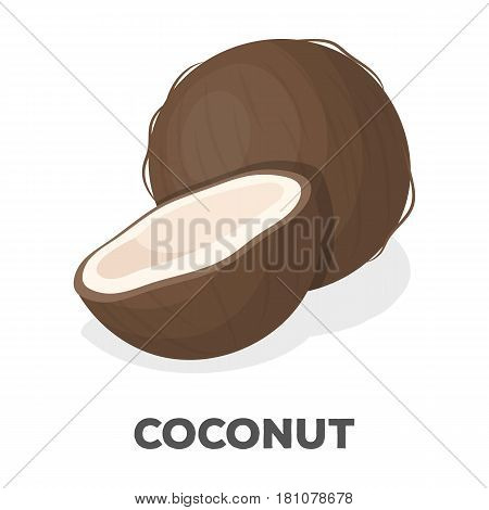 Coconat.Different kinds of nuts single icon in cartoon style vector symbol stock web illustration.