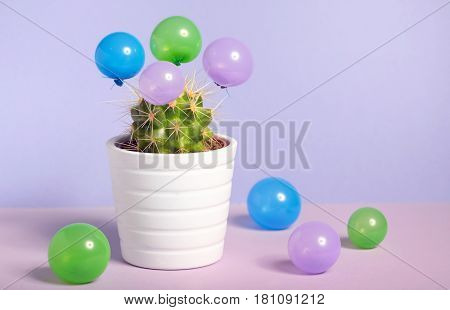 Abstract cactus in pot and small baloons
