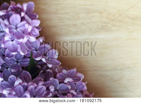 Spring floral background with fresh lilac flowers on a wooden background. border with spring summer blossom. Copy space.