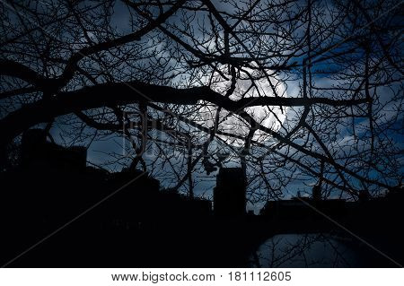 Silhouette of dry trees night sky and full moon over green nature background. View through the branches to cityscape at nighttime. The moon were NOT furnished by NASA.