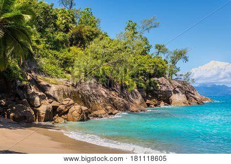 Dream Seascape Coast - Idyllic paradise palm Anse Major beach part of the Baie Tarney Marine National Park and is overall part of the Morne Seychellois National Park.