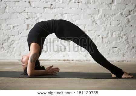 Young yogi attractive woman practicing yoga concept, standing in Dvi Pada Viparita Dandasana exercise, Elbow Bridge pose, working out, wearing sportswear, black pants, full length, white background