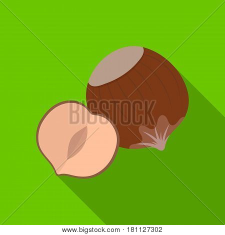 Hazelnuts in shell.Different kinds of nuts single icon in flat style vector symbol stock web illustration.