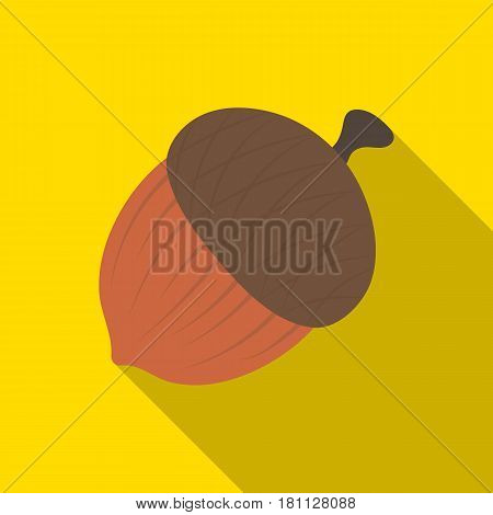An acorn with a hat.Different kinds of nuts single icon in flat style vector symbol stock web illustration.