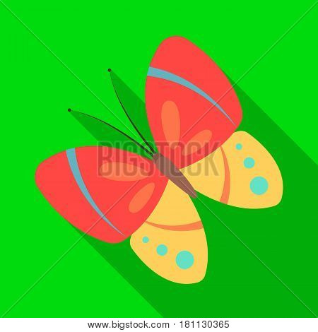 Spring butterfly. Easter single icon in flat style vector symbol stock web illustration.