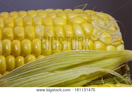 Close up sweet corn on cobs kernels on white background corn vegetable isolated.Organic corn is a vitamin C food,magnesium-rich food & contains certain B vitamins & potassium.