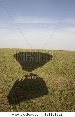 Shadow silhouette of hot air balloon basket and envelope flying over Serengeti National Park Tanzania Africa.